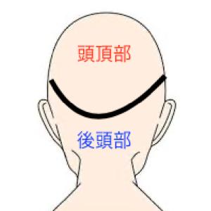 後頭部はAGAの影響を受けにくい 薄毛になりにくいというのは本当ですか?