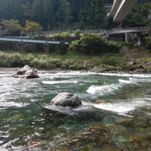 長良川で流されて吉田川へ