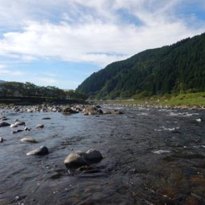 郡上で鮎釣り 長良川大和から吉田川へ