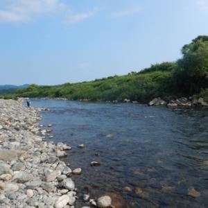 鮎友と安曇川広瀬で鮎釣り(・∀・)