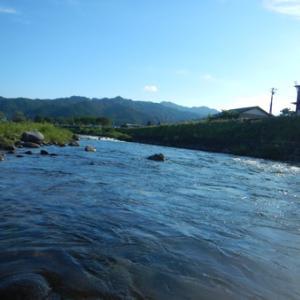 長良川と吉田川で鮎釣りィィ