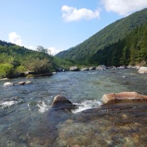 四連休二日目も馬瀬川で鮎釣りィィ