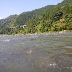 四連休三日目は長良川、吉田川で鮎釣り^o^