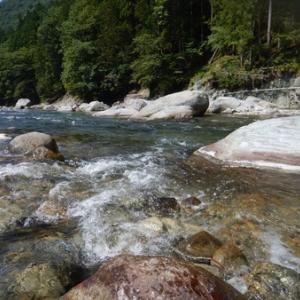 月曜日は馬瀬川で鮎釣り^ - ^