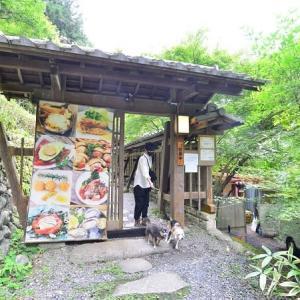 森の中のお肉レストラン アースガーデン(奥多摩)