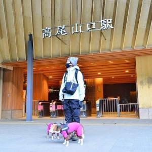 犬と高尾山に行ってきました♪(その1)