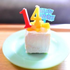 とらの14歳の誕生日♪