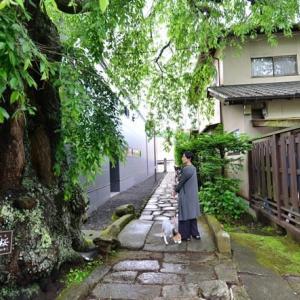 犬と軽井沢旅行に行ってきました♪(その1)