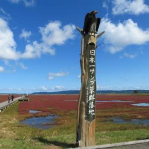 サンゴ草 と サロマ湖サイクリング