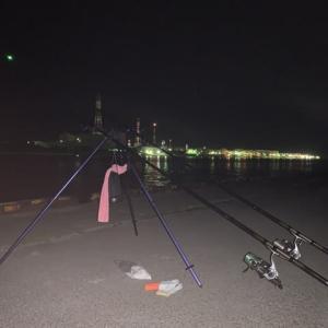 太くて長いの求めて夜釣り
