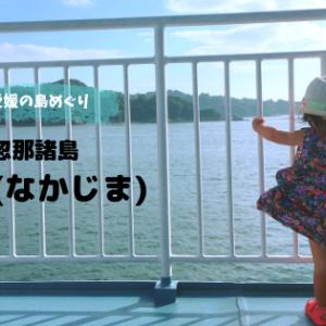 【島巡りvol.6中島】みかんの島、中島