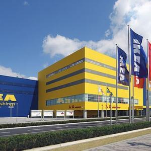 IKEA神戸 譲渡会 参加猫 ❻