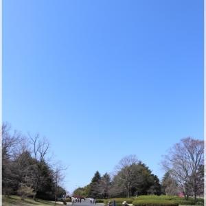 昭和記念公園で 嬉しい出会い♪