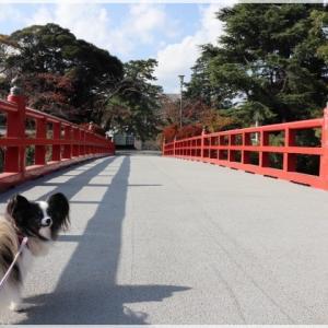 とある目的で 小田原城へ!