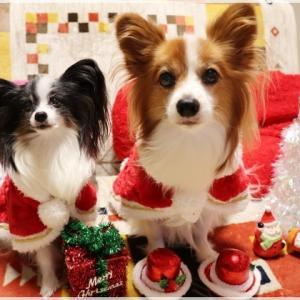 メリー☆クリスマス♪