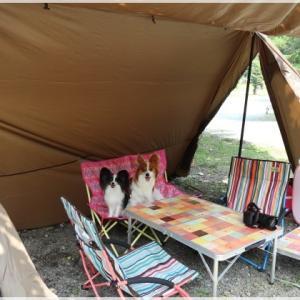 青根キャンプ場で デイキャンプ!
