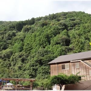 河津七滝オートキャンプ場へ! ~ 1日目 ~