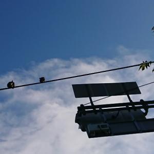 ◆青空に一本線◆