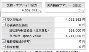 11/25   オプション  -250円