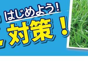 夏芝対策クラブ③【グリーン周りの夏芝でフライングウェッジ<DFW-119>編】
