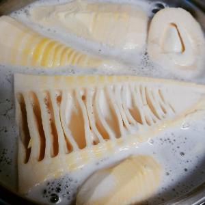 旬のタケノコ料理