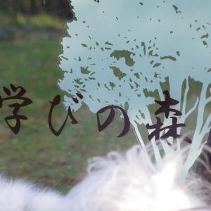 リベンジ学びの森