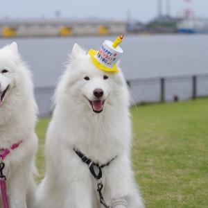 楽しい誕生日♡