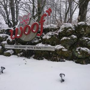 予報通り、雪!