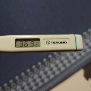 36.9℃