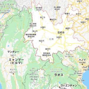 飛蝗が中国にやってきた