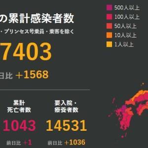 武漢肺炎 8月8日の状況