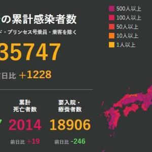 武漢肺炎11月24日の状況