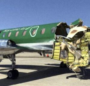 航空機の空中接触、けが人なし。