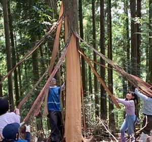 僧侶の方へお願い「きらめ樹間伐材のお塔婆の購入にご協力下さい」