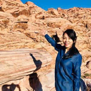ラスベガスの赤い岩
