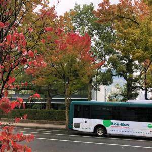広島南部も秋キター