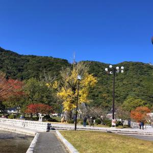 吉香公園(きっこうこうえん)の紅葉