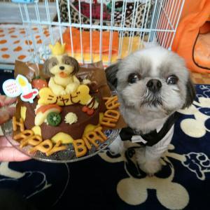 ロビナの誕生日ケーキを食うジャビ♪