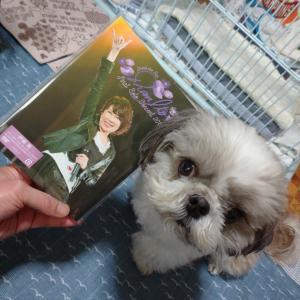 伊藤蘭ちゃんのファースト・ソロ・コンサート2019のDVD♪