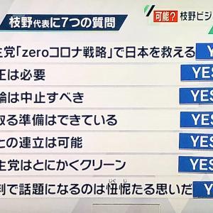 立憲・枝野幸男「政権を取った後の準備はできています」
