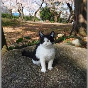 ★猫★羊毛フェルト