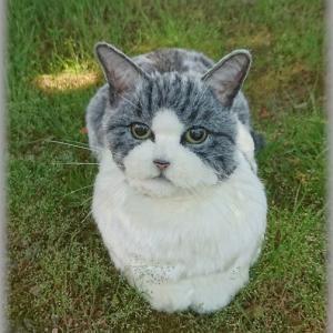 ★実寸大サイズ 猫★羊毛フェルト
