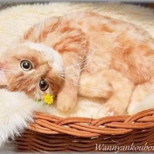 ★ミックス猫★羊毛フェルト