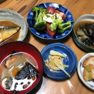 昨日は和食で500g減です!