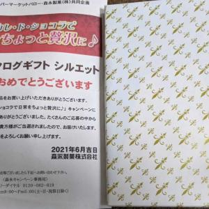 A賞 カタログギフト シルエット