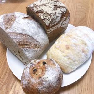 ベッカライブローツァイト 最近のパンに関わる夢見たいな話