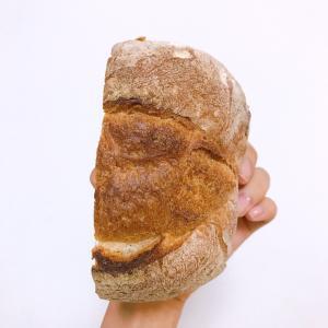 ハルタはアリなパン屋です