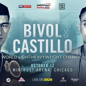 ビボルvsカスティージョ 「結果」 WBA世界ライトヘビー級タイトル戦