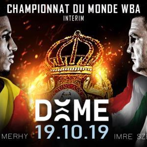 メルウィーvsツェロ 「結果」 WBAクルーザー級暫定王座決定戦