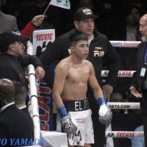 8/15 WBCマルティネス vs WBAダラキアン 「世界フライ級王座統一戦」